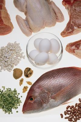 Qual è la differenza tra proteine & aminoacidi?