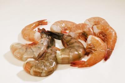 Elenco degli alimenti contenenti frutti di mare