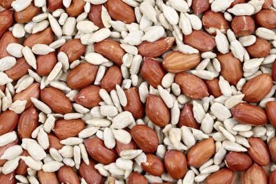Lista degli alimenti che contengono fenilalanina