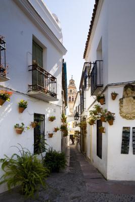 Cose da fare: Andalusia