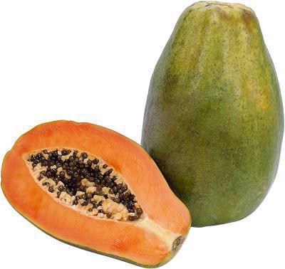 Gli enzimi della papaia olio sono gli stessi come gli enzimi della papaia polvere?