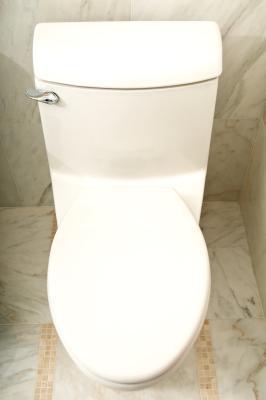 Fibra aiuta andare al bagno?