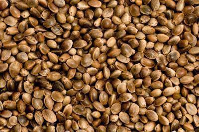 Quali sono i vantaggi di mangiare canapa cuori?